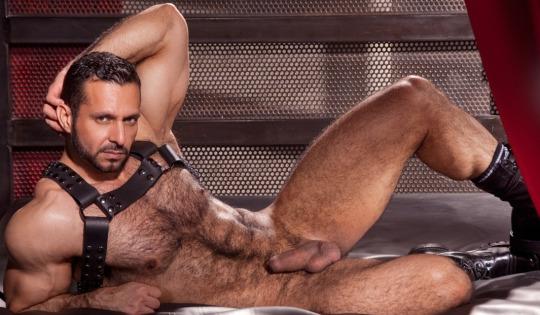 Musculado peludo porno gay video Porn Star Adam Champ Musculo Duro Videos Gay Online