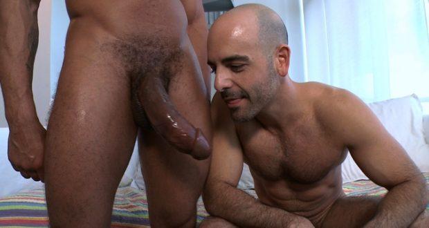 Gay Castro porno