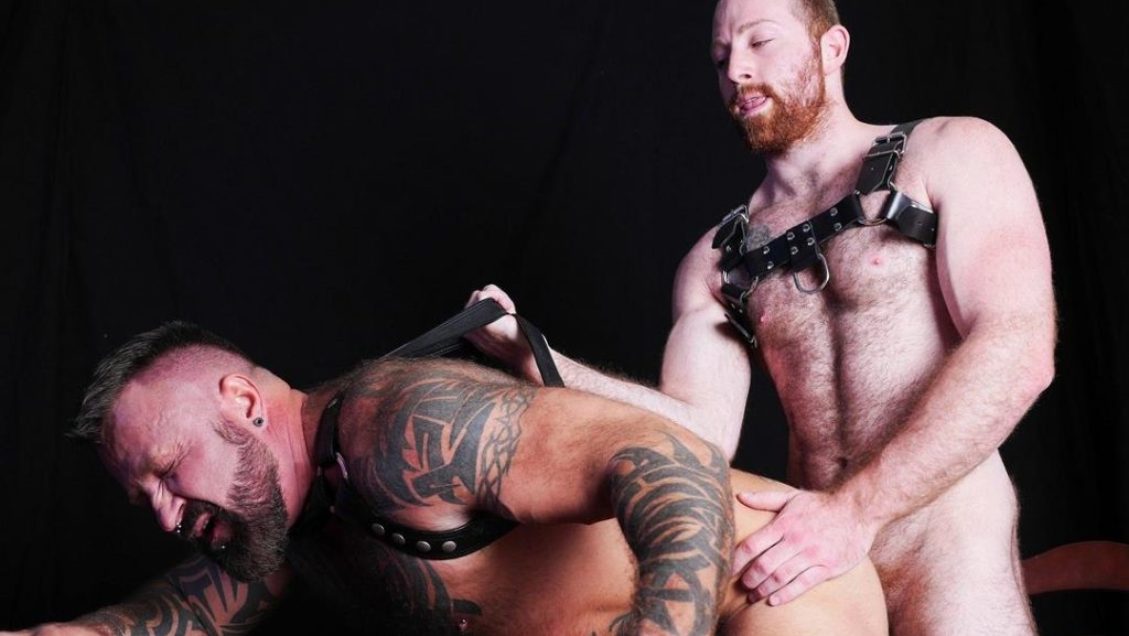 Order and Swine - Sean Knight & Marc Angelo